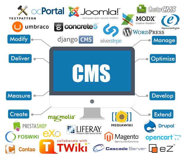 CMS Web Development websites